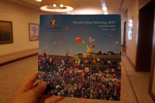 EURORDIS Membership Meeting 2013 and DITA Task Force meeting in Dubrovnik